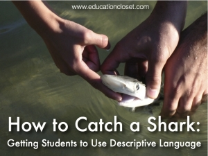 Getting Your Students To Use Descriptive and Specific Language, Education Closet