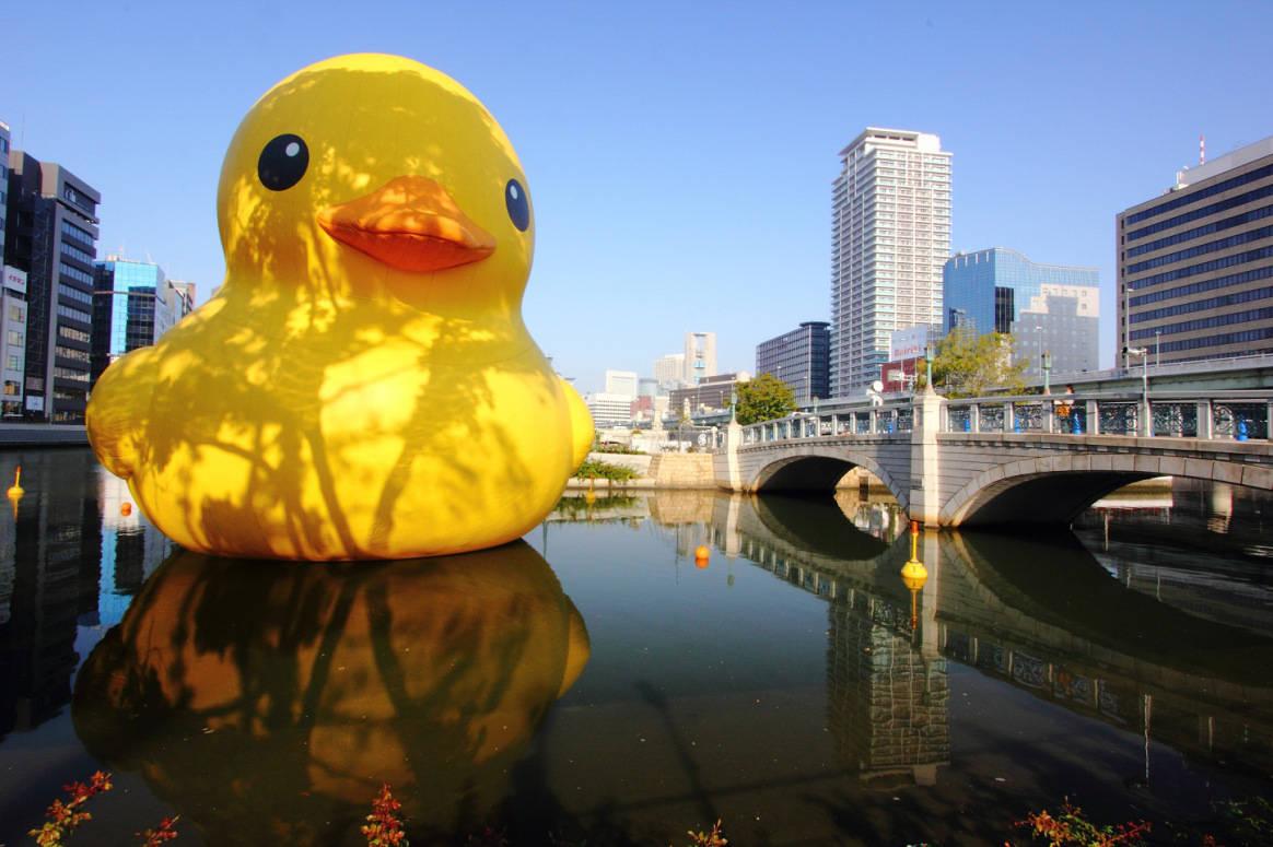 Osaka duck