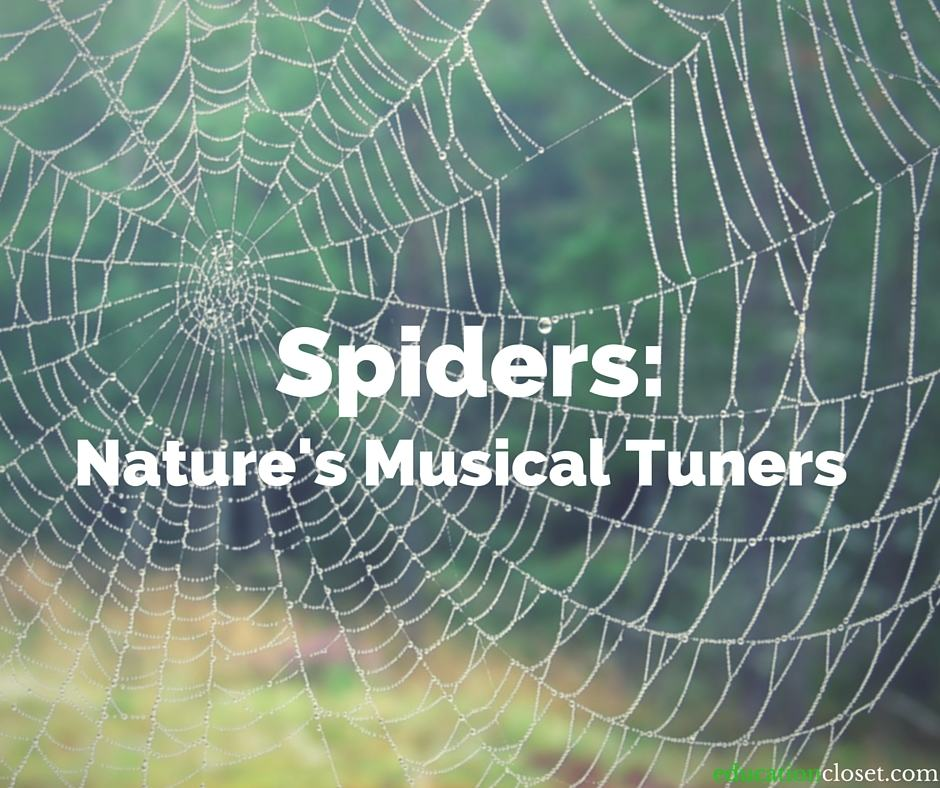 Nature's Musical Tuners, Education Closet