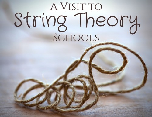 A Visit to String Theory Schools