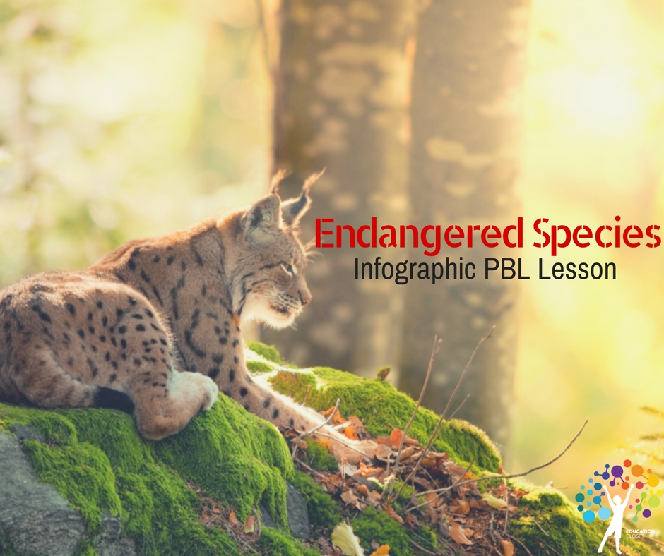 Endangered Species Infographic PBL Lesson, Education Closet