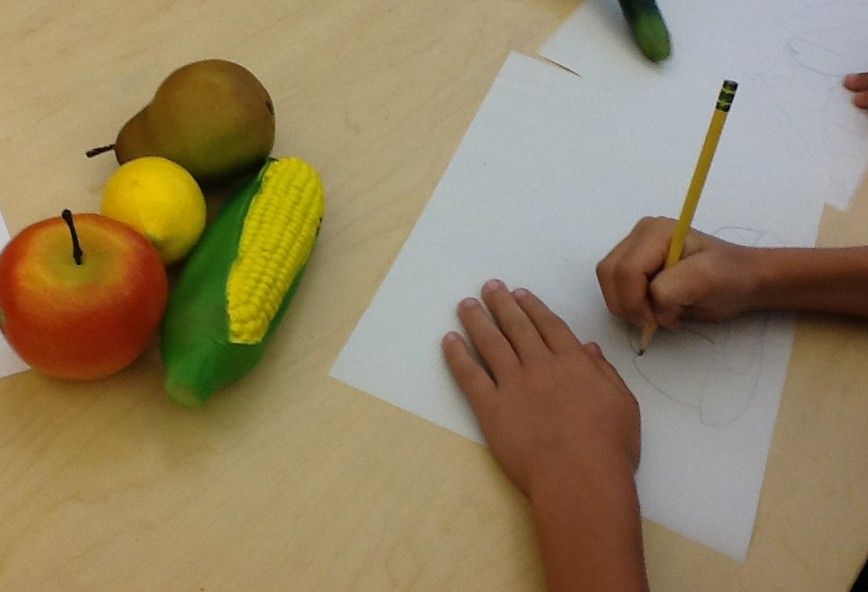 Grade 3 student working on a still life, Education Closet