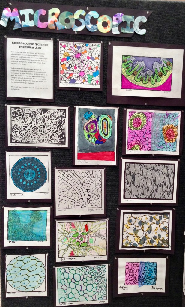 microscopic art bulletin board