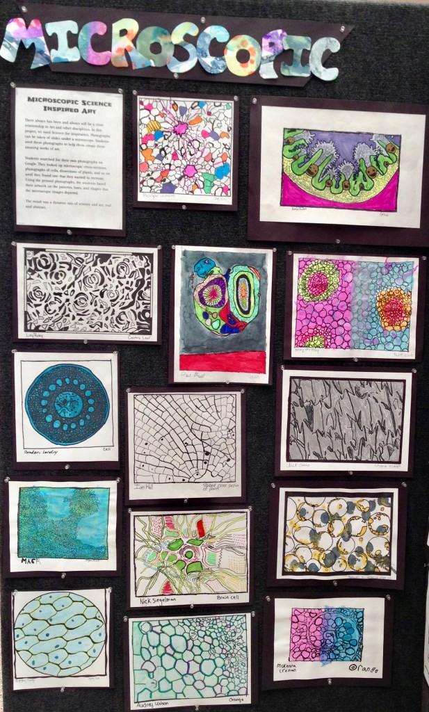 microscopic art bulletin board